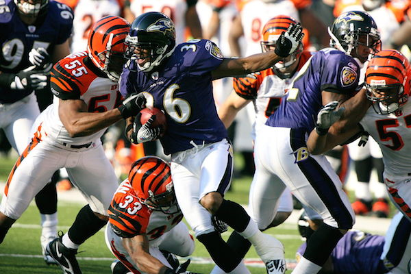 What S Special About The Cincinnati Bengals Dear Sports Fan